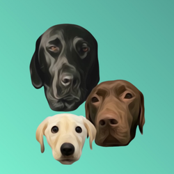 Winston and Rutledge Labs